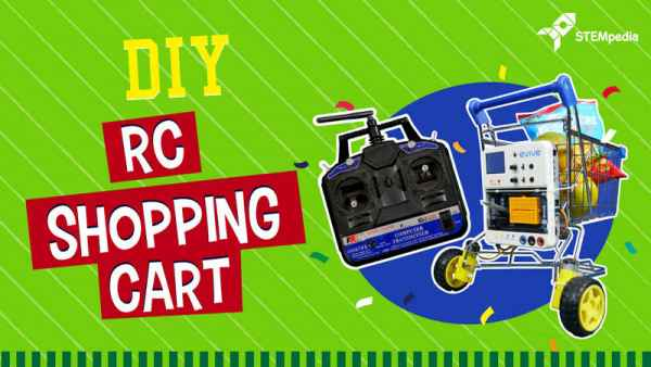 Make Your Own Remote Control RC Smart Shopping Cart/Trolley for Malls